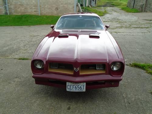 1975 Very rare 455 Pontiac Firebird Transam. For Sale (picture 3 of 6)