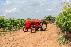 Porsche Tractor - Fully Recovered