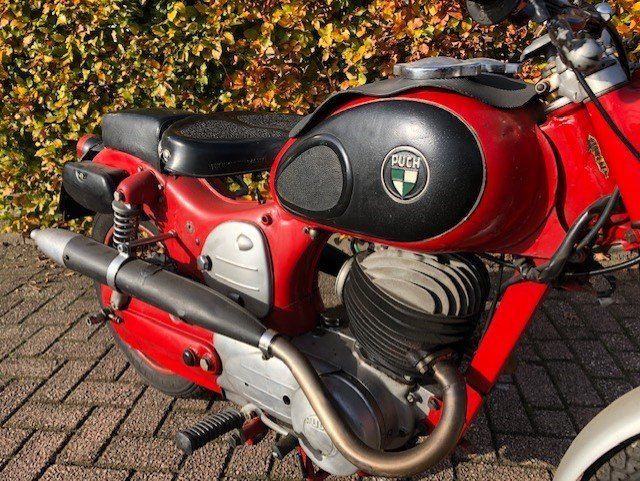 PUCH 250 SG 1957 For Sale (picture 6 of 6)