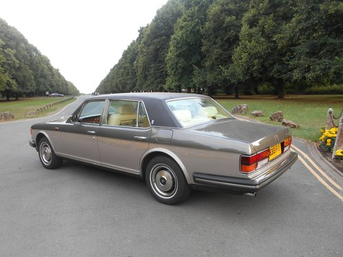 1984 A beautiful luxury saloon For Sale (picture 2 of 6)