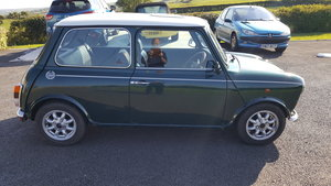 1990 Mini Cooper RSP For Sale