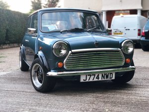1991 199 Rover Mini Neon For Sale