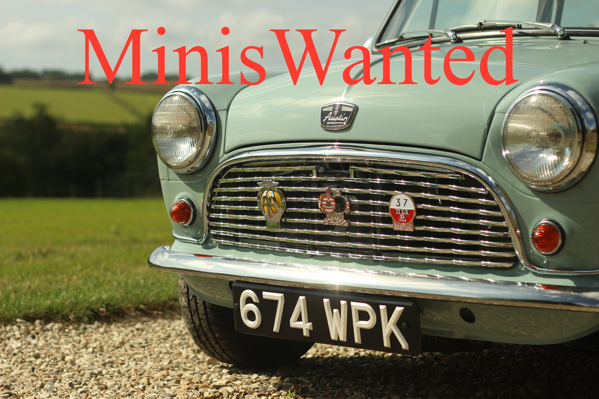 2000 ** MINIS WANTED ---- MINIS WANTED ** For Sale (picture 1 of 1)