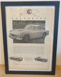 Original 1960 AC Greyhound Framed Advert