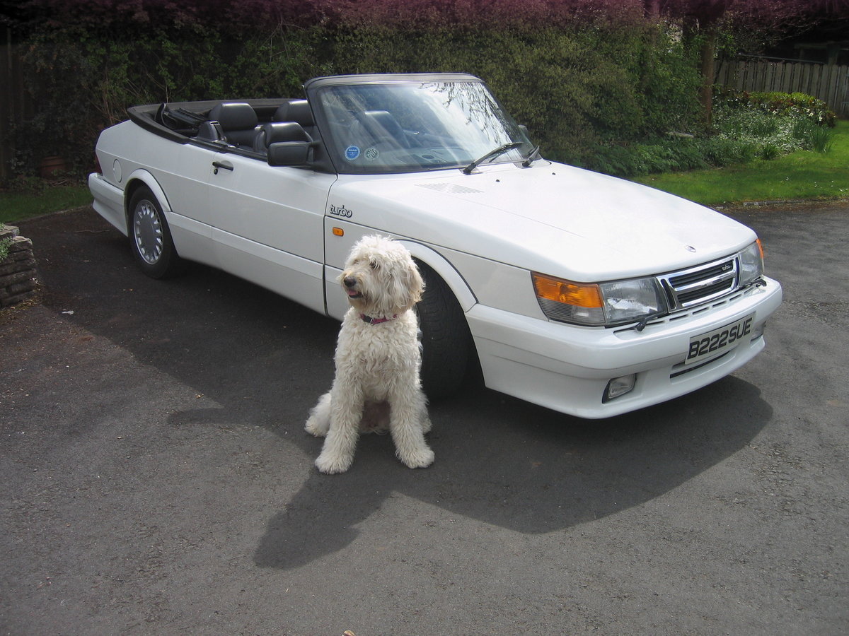1988 SAAB 900 Turbo 16 Convertible Airflow For Sale (picture 1 of 12)
