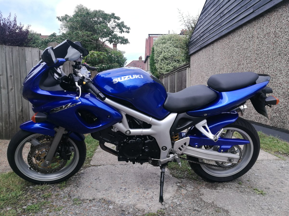 1999 Suzuki SV650s  low mlg tuned For Sale (picture 6 of 6)