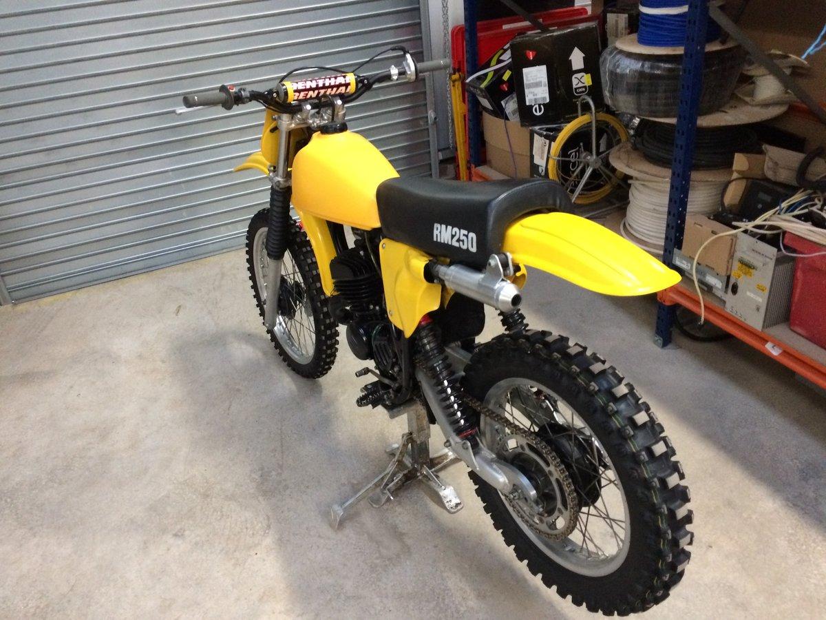 1978 Suzuki RM250C For Sale (picture 5 of 6)
