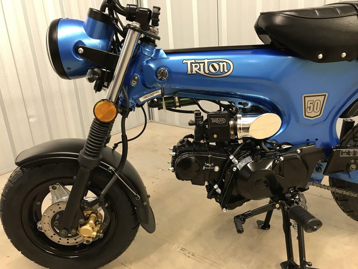 2019 Triton Manix ST-50 For Sale (picture 4 of 6)