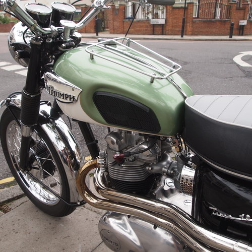 1968 Tiger 100 / 500cc Concours. RESERVED FOR LEE. SOLD (picture 2 of 6)
