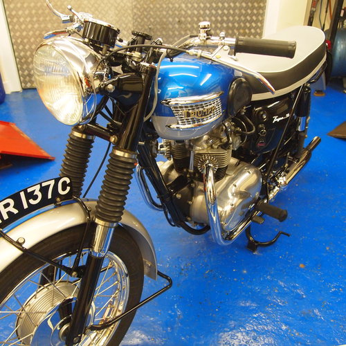 1965 Tiger T90 350cc Concours d' Elegance Condition. SOLD. SOLD (picture 4 of 6)