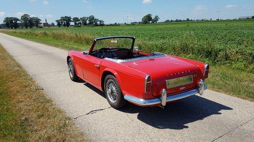 1963 Triumph TR4 '63   For Sale (picture 2 of 6)