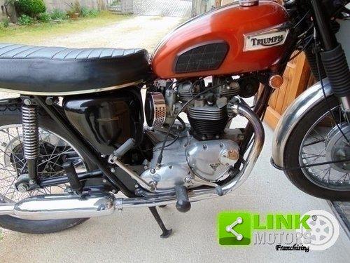 Triumph Bonneville T120 650, anno 1969, iscritta ASI, docum For Sale (picture 3 of 6)