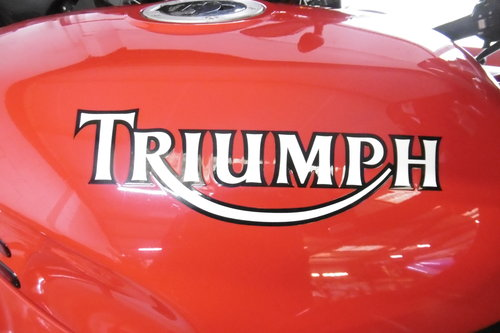 1995 Triumph Daytona STUNNING ORIGINAL CONDITION  For Sale (picture 4 of 6)
