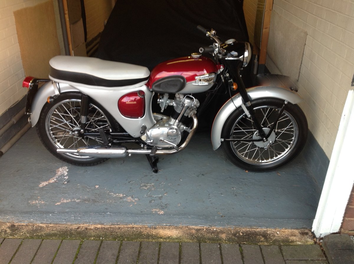 1966  Triumph Tiger Cub ( Price Reduced ) SOLD (picture 1 of 6)