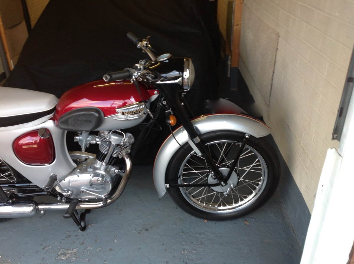 1966  Triumph Tiger Cub ( Price Reduced ) SOLD (picture 2 of 6)