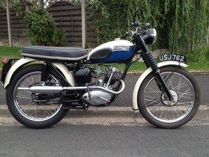 1960  Triumph Tiger Cub Sport T20S