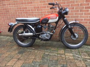 1967 Unrestored Mountain Cub For Sale