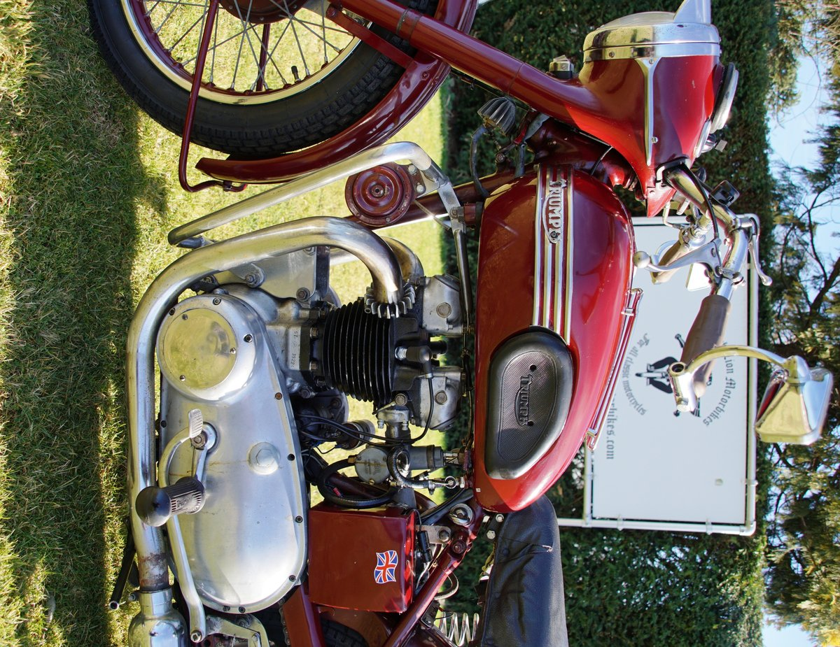 Triumph Speed twin 5T from 1953 For Sale (picture 6 of 6)