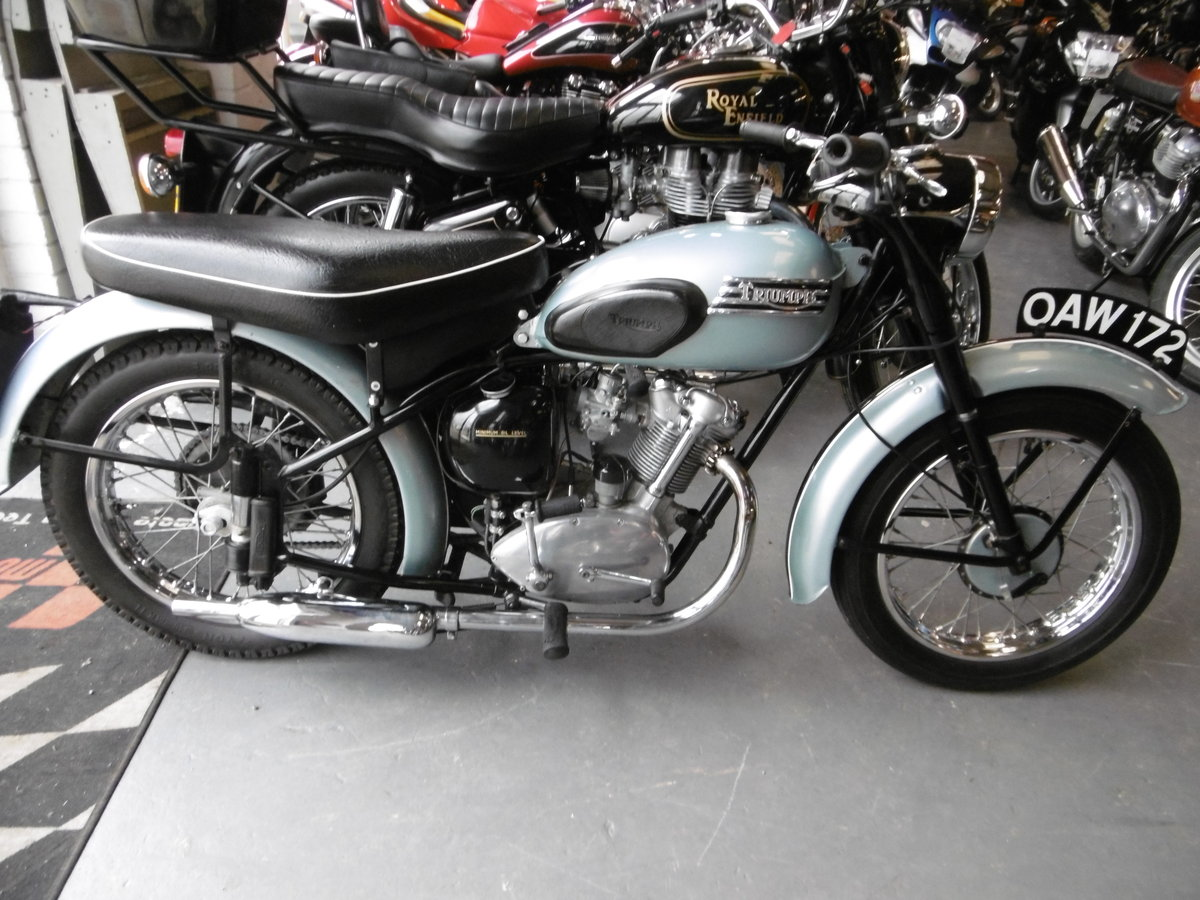 1956 Triunph Tiger cub Stunning and all correct  SOLD (picture 1 of 6)