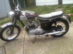 1961 TRIUMPH TR6 For Sale