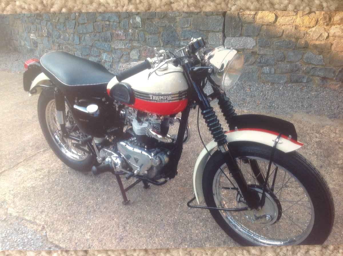 1956 Triumph Trophy TR6 For Sale (picture 1 of 1)