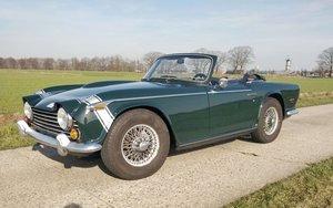 1968 Triumph TR250: 13 Apr 2019