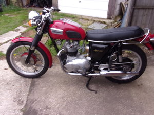 1971 TRIUMPH T100 For Sale