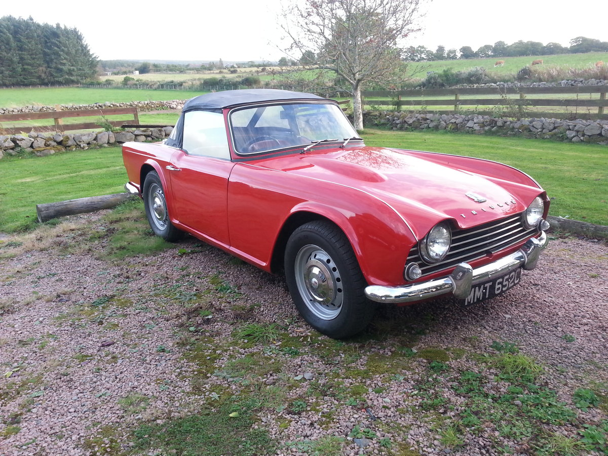 Triumph TR4 1965 may P/X SOLD (picture 1 of 6)