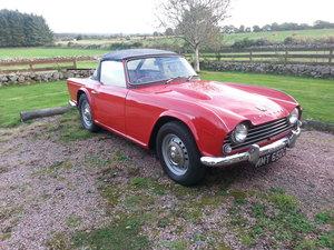 Triumph TR4 1965 For Sale
