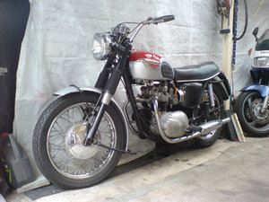 1967 Triumph T100T Daytona For Sale