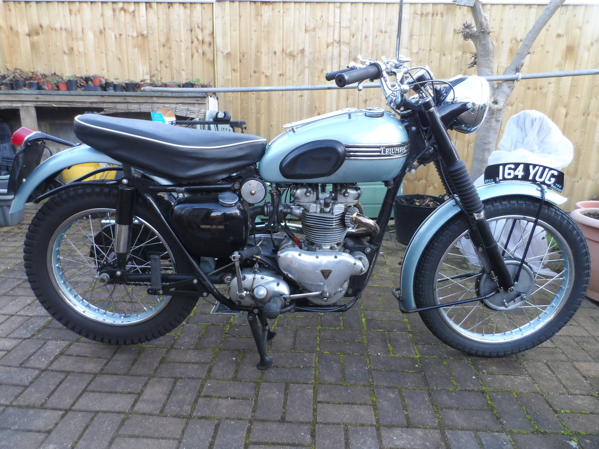 1956 Triumph TROPHY For Sale (picture 3 of 6)