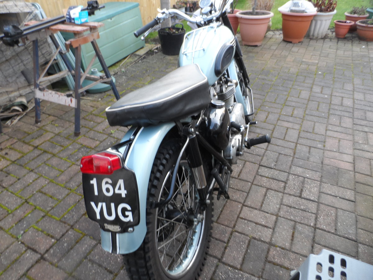 1956 Triumph TROPHY For Sale (picture 4 of 6)