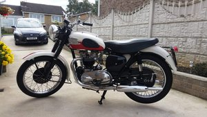 1957 Triumph T110 For Sale
