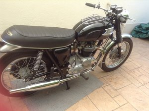 1969 triumph tr6p trophy motorcycle For Sale