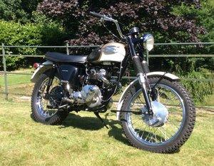 Lot 104 - A 1965 Triumph T100sc - 10/08/2019 SOLD by Auction