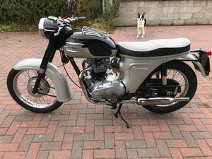 THUNDERBIRD 6T 650 For Sale