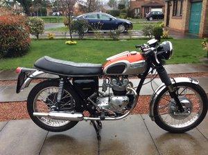 1970 Triumph T100 For Sale