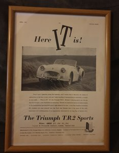1955 Triumph TR2 Advert Original