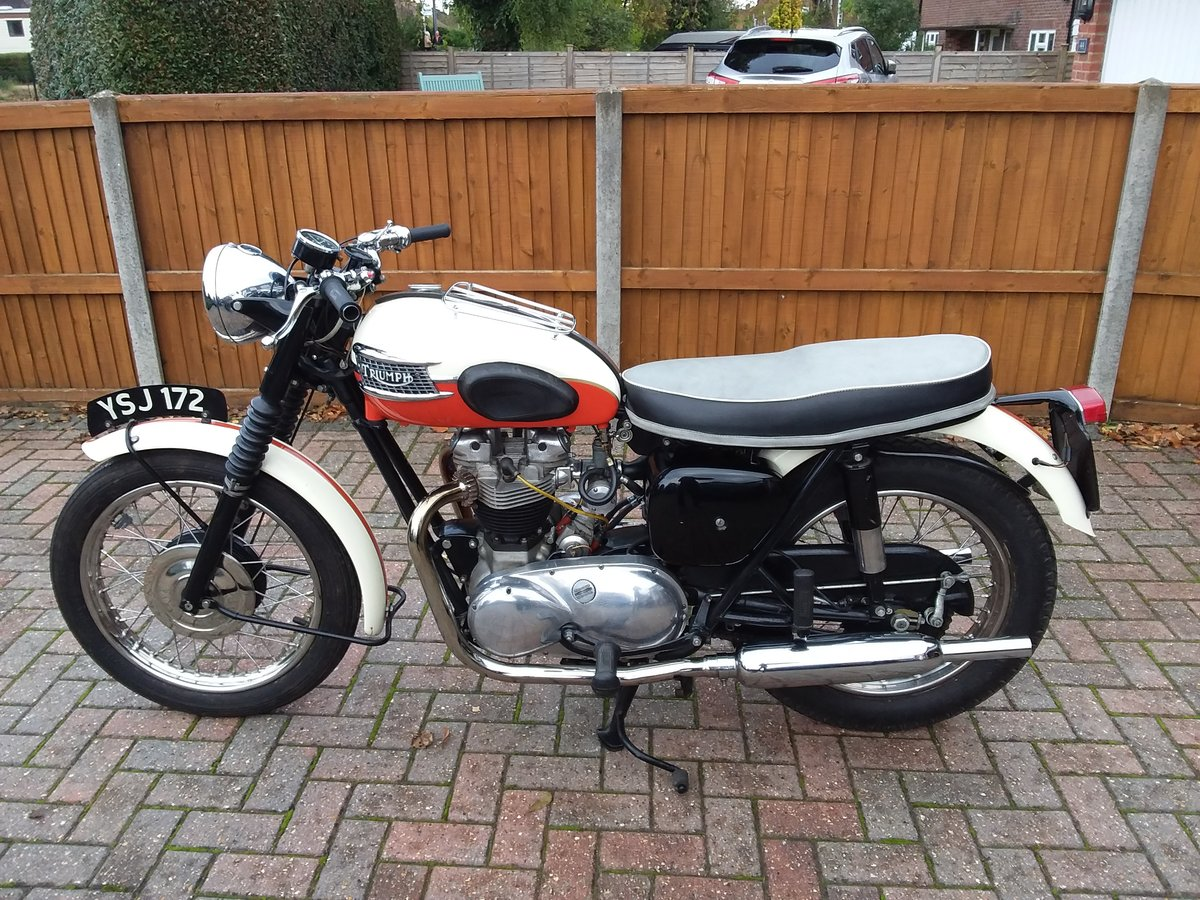 1961 Triumph Trophy 650 Classic Pre-Unit  For Sale (picture 1 of 4)