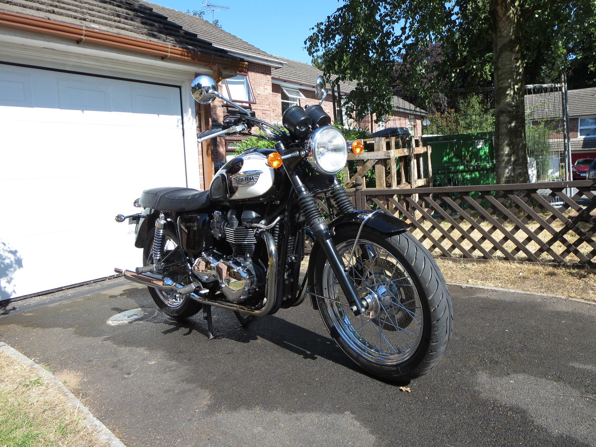 2009 Triumph bonneville t100 865cc For Sale (picture 2 of 5)