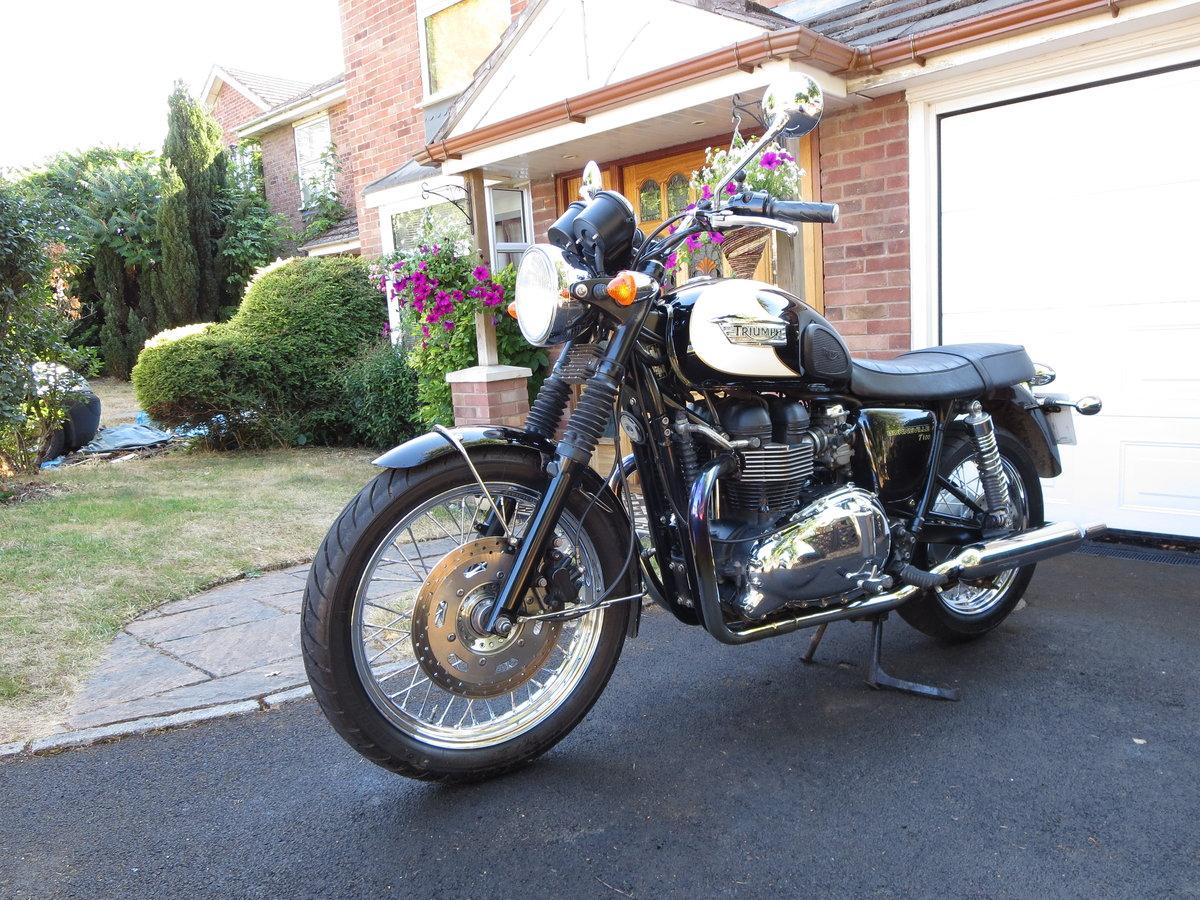 2009 Triumph bonneville t100 865cc For Sale (picture 3 of 5)