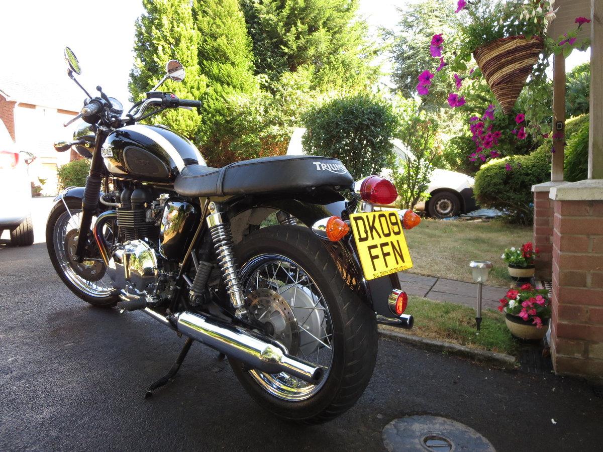 2009 Triumph bonneville t100 865cc For Sale (picture 4 of 5)