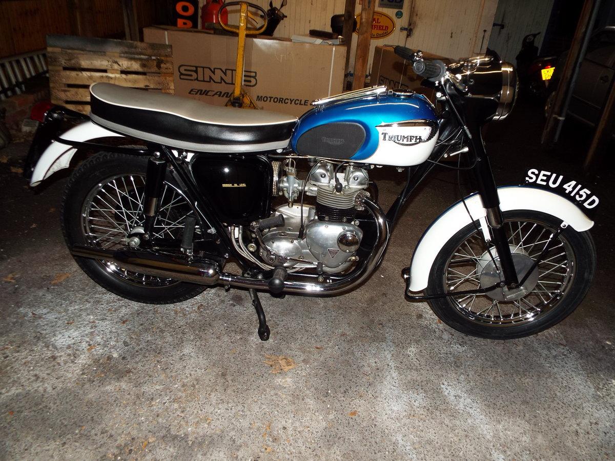 1966 Triumph 21/3TA 350cc  For Sale (picture 2 of 6)