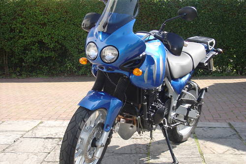 2007 Triumph Tiger 955i Showroom Condition Sold Car And Classic