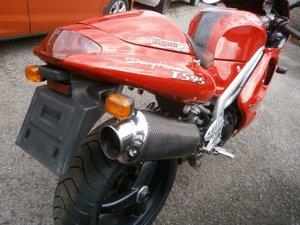 Triumph t595 daytona 955cc