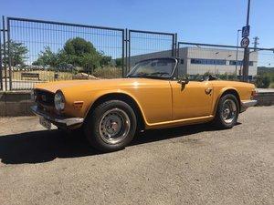 Triumph - TR6 PI - 1972