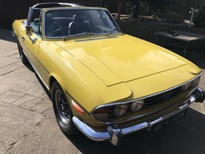 Triumph stag, beautiful classic