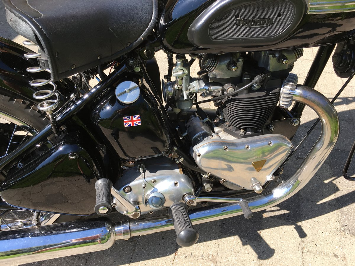 1953 Restored Tiger 100 with rigid frame For Sale (picture 2 of 6)