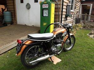 1963 Triumph tiger 90