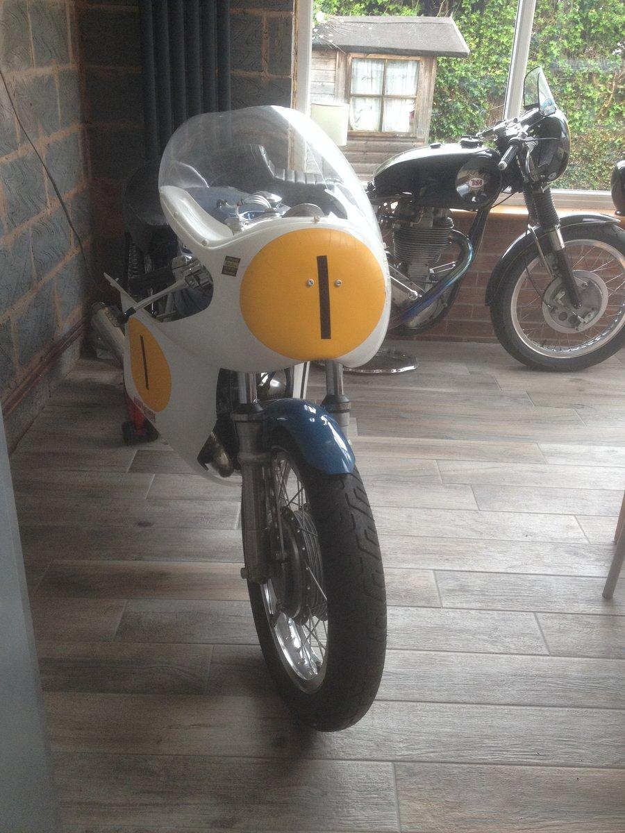 1967 Triumph daytona 200 race bike For Sale (picture 2 of 6)